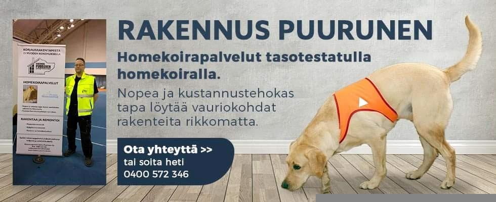 Homekoira-kuopio